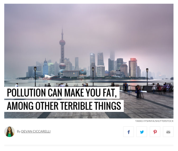 The Health Effects of Pollution