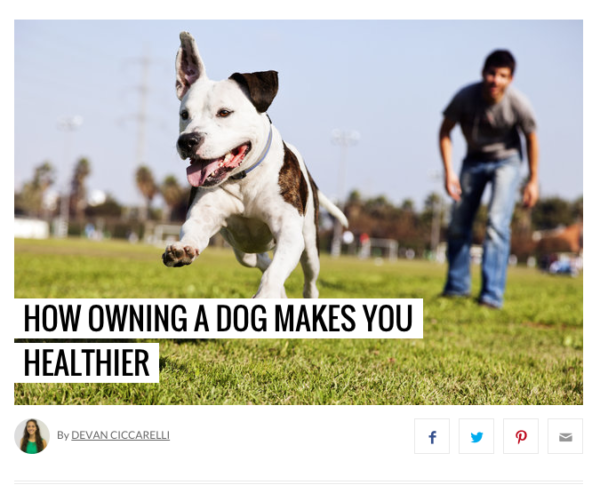 How Owning a Dog Makes You Healthier